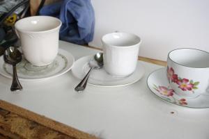 Homelifescience Diy Tea Cup Bird Feeders Water Baths