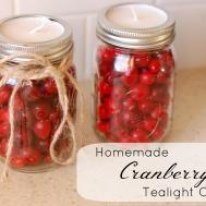 Homemade Cranberry Candles Simple Parent