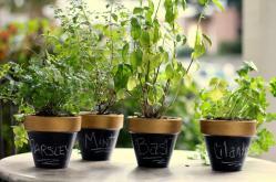 Homevolution Diy Gold Chalkboard Flower Pots