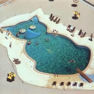 Hotels Creative Shaped Pools Eccentric