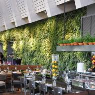 Ideas Redoubtable Indoor Garden Design Sipfon