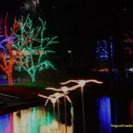 Imposing Lights Pepa Torres World Along