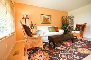 Impressive Living Room Decor Ideas Orange Accent Wall