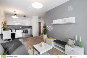 Interior Design Living Room Kitchen