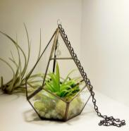 Large Hanging Terrarium Stained Glass