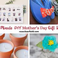 Last Minute Diy Mother Day Gift Ideas Rose Clearfield