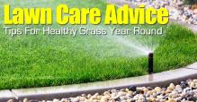 Lawn Care Advice Tips Healthy Grass Year Round