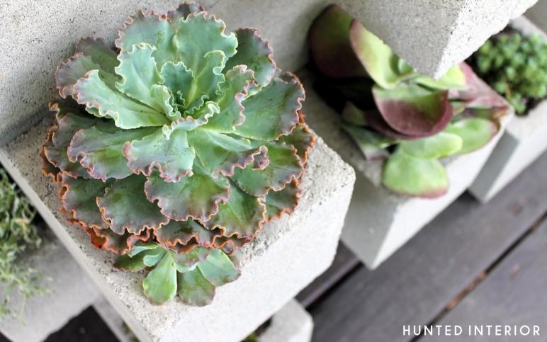 Life Middle Lane Cinder Block Planter Redux