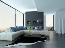 Living Room Corner Decorating Ideas Extravagant Home Design