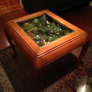 Living Room Rectangular Metal Glass Terrarium Coffee