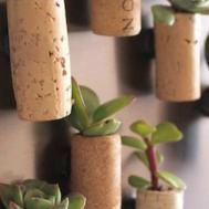 Magnetic Cork Planters Make