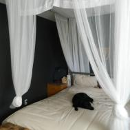 Make Bed Canopy Canopybed37 Mop Bucket