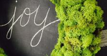 Make Reindeer Moss Wreath Hometalk