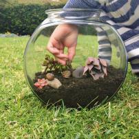 Make Snail Terrarium