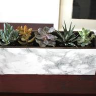 Marble Succulent Planter Diy Itsprettynice