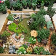 Miniature Gardening Town Country Nurseries