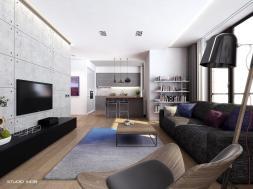 Modern Apartment Interior Design Home