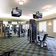Modern Home Gym Design Ideas House