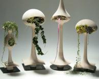 Modern Indoor Gardening Design Ideas Beautify Your