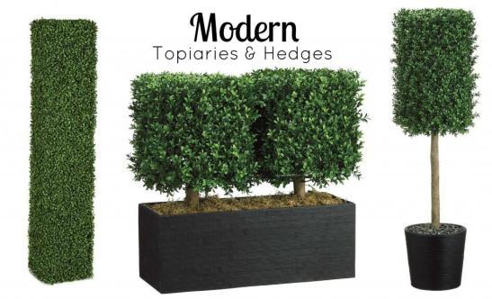 Modern Topiaries Hedges