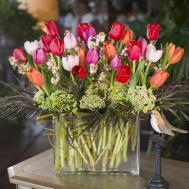 Multi Colored Tulip Bouquet Pasadena Jacob Maarse