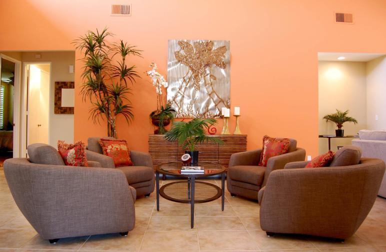 Orange Living Room Ideas Dgmagnets