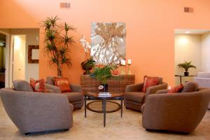 Orange Living Room Ideas Dgmagnets