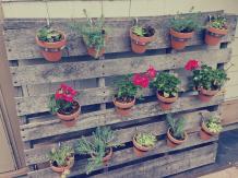 Pallet Herb Garden Solution Limited Space