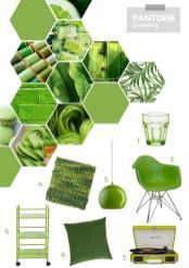 Pantone Colour Year Greenery Kassandra Dekoning