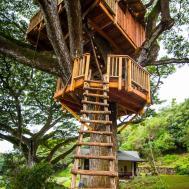 Photos Treehouse Guys Diy