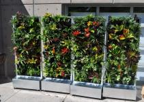 Plants Walls Vertical Garden Systems