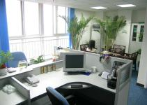 Professional Office Interior Design Work
