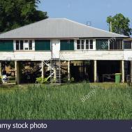 Queenslander House Sugar Cane Field Cairns North