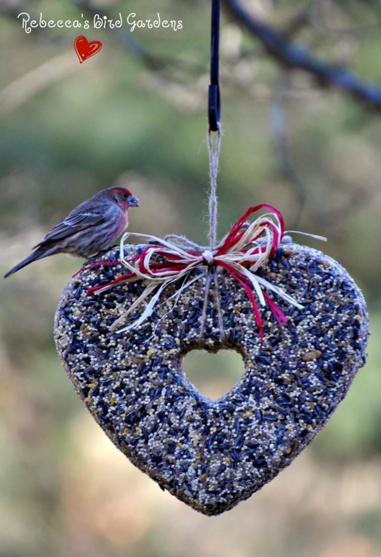 Rebecca Bird Gardens Blog Diy Heart Feeders