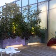 Roof Terrace Led Lighting Mylandscapes
