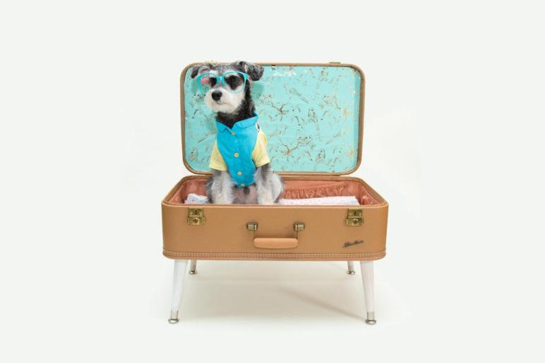 Shipping Upcycled Vintage Suitcase Pet Bed Dog