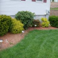 Simple Backyard Landscape Design Best