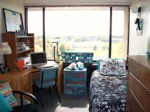 Single Dorm Room Decorating Ideas Peenmedia