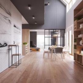 Sleek Surprising Interior Inspired Scandinavian