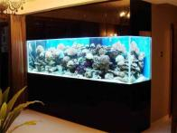Small Bedroom Furniture Placement Fish Tank Modern