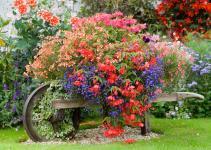 Spring Updates Home Garden