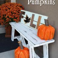 Stump Pumpkin Log Her Tool Belt