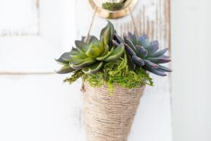 Succulent Cone Planter