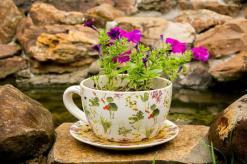 Teacup Garden Planters Miniature Gardens