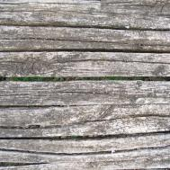 Texture Old Strips Wood Lugher