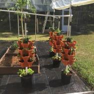 Tier Strawberry Planter