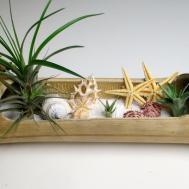 Tillandsia Beach Landscape Bamboo Craft Organic