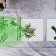 Turn Leaves Foliage Into Diy Canvas Wall Art
