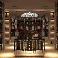 Walk Closet Organization Luxury Design