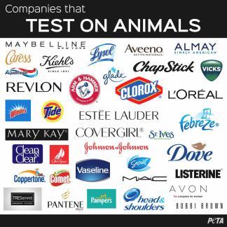 Ways Help Animals Experiments Action Peta